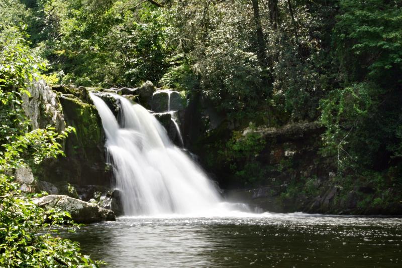 Abrams Falls by mpnh08