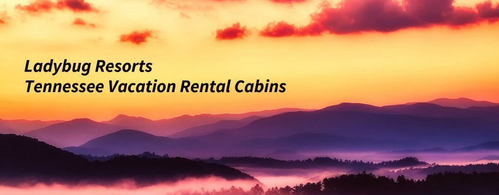 LadybugResortsTennesseeVacationRentalCabins